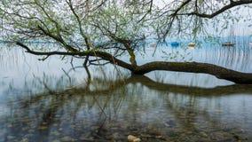 Lago Chiemsee al crepuscolo Fotografia Stock
