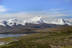 Lago Chungara en el parque nacional de Lauca Imágenes de archivo libres de regalías