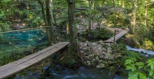 lago Ciano-azul Ochiul Beiului na reserva de Nera fotos de stock royalty free