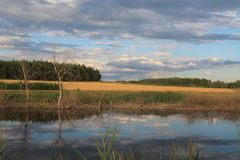 Lago circondato dai campi e dalla foresta Fotografia Stock Libera da Diritti