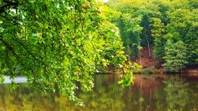 Lago clásico germany y hojas coloreadas Fotos de archivo libres de regalías