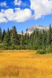 Lago Clark National Park mountain del pendio Fotografia Stock