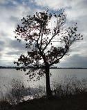Lago claro en la caída Imagen de archivo libre de regalías