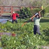 Lago cleaning Imagen de archivo