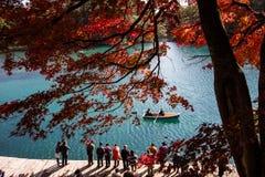 Lago color ed albero di colore in autunno fotografia stock