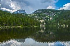 Lago colorado bear Fotografia Stock