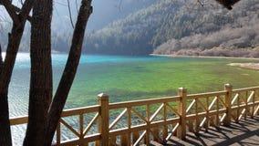 Lago com água torrada clara fotos de stock royalty free