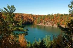 Lago com água verde no outono imagem de stock