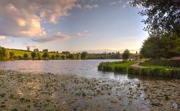 Lago com as árvores no por do sol Fotografia de Stock Royalty Free
