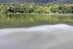 Lago com a onda da reflexão da floresta e o fundo da montanha fotografia de stock