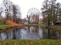Lago com patos em um parque do outono fotos de stock