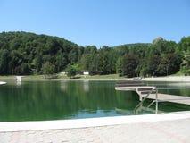 Lago com placa de mergulho Imagens de Stock Royalty Free