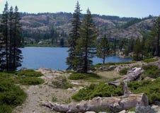 Lago com registro Imagem de Stock Royalty Free