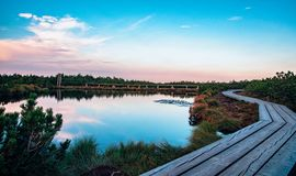 Lago com trajeto de madeira fotos de stock