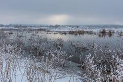 Lago Comana nell'inverno Fotografie Stock Libere da Diritti
