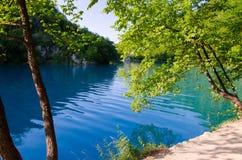Lago con chiara acqua del turchese, laghi Plitvice del parco nazionale, C immagine stock libera da diritti
