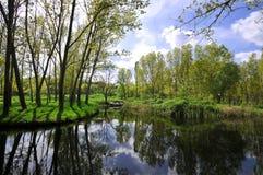 Lago con el bosque Fotografía de archivo