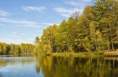 Lago con el bosque amarillo en otoño Foto de archivo