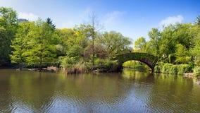 Lago con el puente en el parque fotografía de archivo