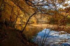 Lago con la reflexión en Yedigoller Fotografía de archivo