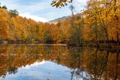 Lago con la reflexión en Yedigoller Imagen de archivo libre de regalías