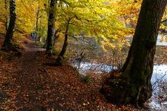 Lago con la riflessione in Yedigoller Fotografie Stock Libere da Diritti