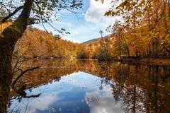 Lago con la riflessione in Yedigoller Fotografia Stock