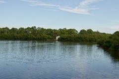 Lago con la vertiente con un muelle imagen de archivo libre de regalías