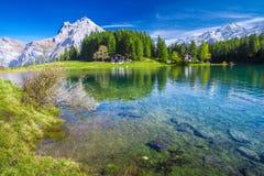 Lago con le alpi svizzere, Cantone di Uri, Svizzera Arnisee Immagine Stock