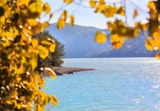 lago con le foglie di autunno gialle nella priorità alta Immagini Stock