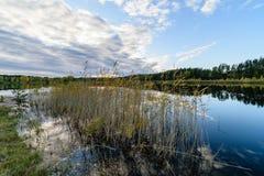 lago con le riflessioni dell'acqua nel giorno variopinto di autunno Fotografia Stock