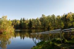 Lago con le riflessioni variopinte degli alberi durante l'estate/riflessioni degli alberi con lo spazio della copia/scape del lag immagini stock