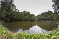 Lago con un bosque frondoso Imagenes de archivo