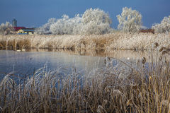 Lago congelado Imagem de Stock Royalty Free