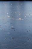 Lago congelado Foto de archivo