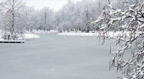 Lago congelado após a tempestade da neve Imagem de Stock Royalty Free