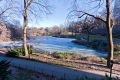 Lago congelado em Central Park Fotografia de Stock