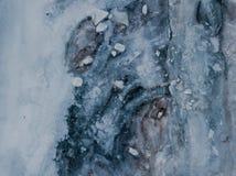 Lago congelado em Islândia Imagem de Stock Royalty Free