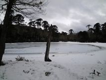 Lago congelado en el EL Cañi, Pucon, Chile de Reserva Imagen de archivo