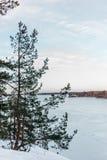 Lago congelado en Finlandia durante la primavera imagen de archivo libre de regalías