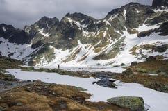 Lago congelado nas montanhas altas de Tatra Imagens de Stock Royalty Free