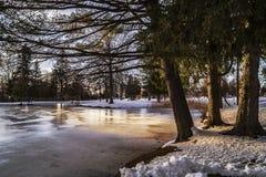 Lago congelado no cemitério! Fotografia de Stock