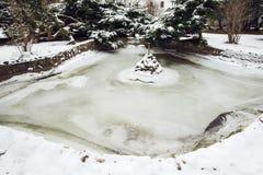 Lago congelado no inverno Imagem de Stock Royalty Free