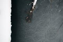 Lago congelado y naturaleza de lámina fotos de archivo libres de regalías