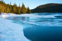 Lago congelato ad alba, supporto Rainier National Park reflection immagine stock