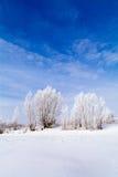 Lago congelato con neve Immagini Stock