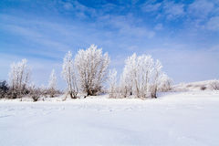 Lago congelato con neve Fotografia Stock Libera da Diritti