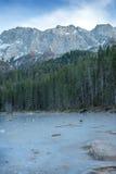 Lago congelato della foresta in alpi bavaresi vicino al lago Eibsee, inverno Fotografia Stock