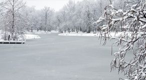 Lago congelato dopo la tempesta della neve Immagine Stock Libera da Diritti