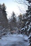 Lago congelato e piccolo ponte, fondo della montagna immagini stock